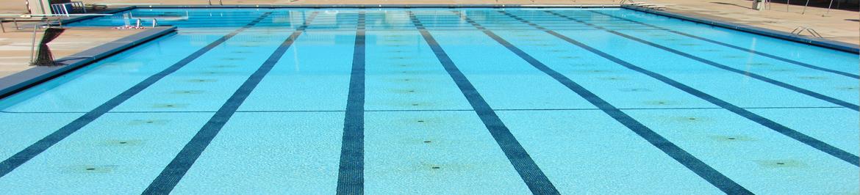 Swimming Pool - Shubham Inc - Municipal